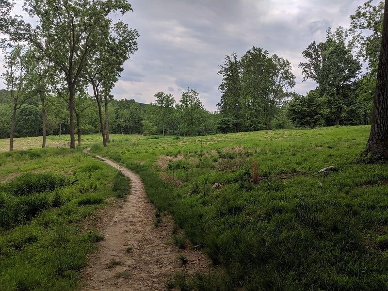 Andorra Meadow