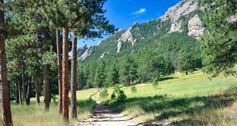 nature sex Denver forest
